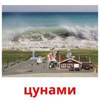 цунами picture flashcards