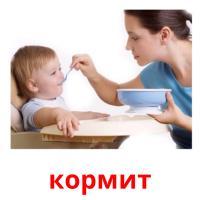 кормит picture flashcards
