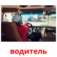 водитель picture flashcards
