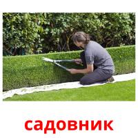 садовник picture flashcards