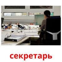 секретарь picture flashcards