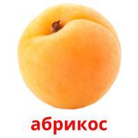 абрикос карточки энциклопедических знаний