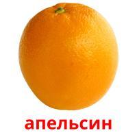 апельсин карточки энциклопедических знаний