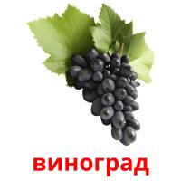 виноград picture flashcards