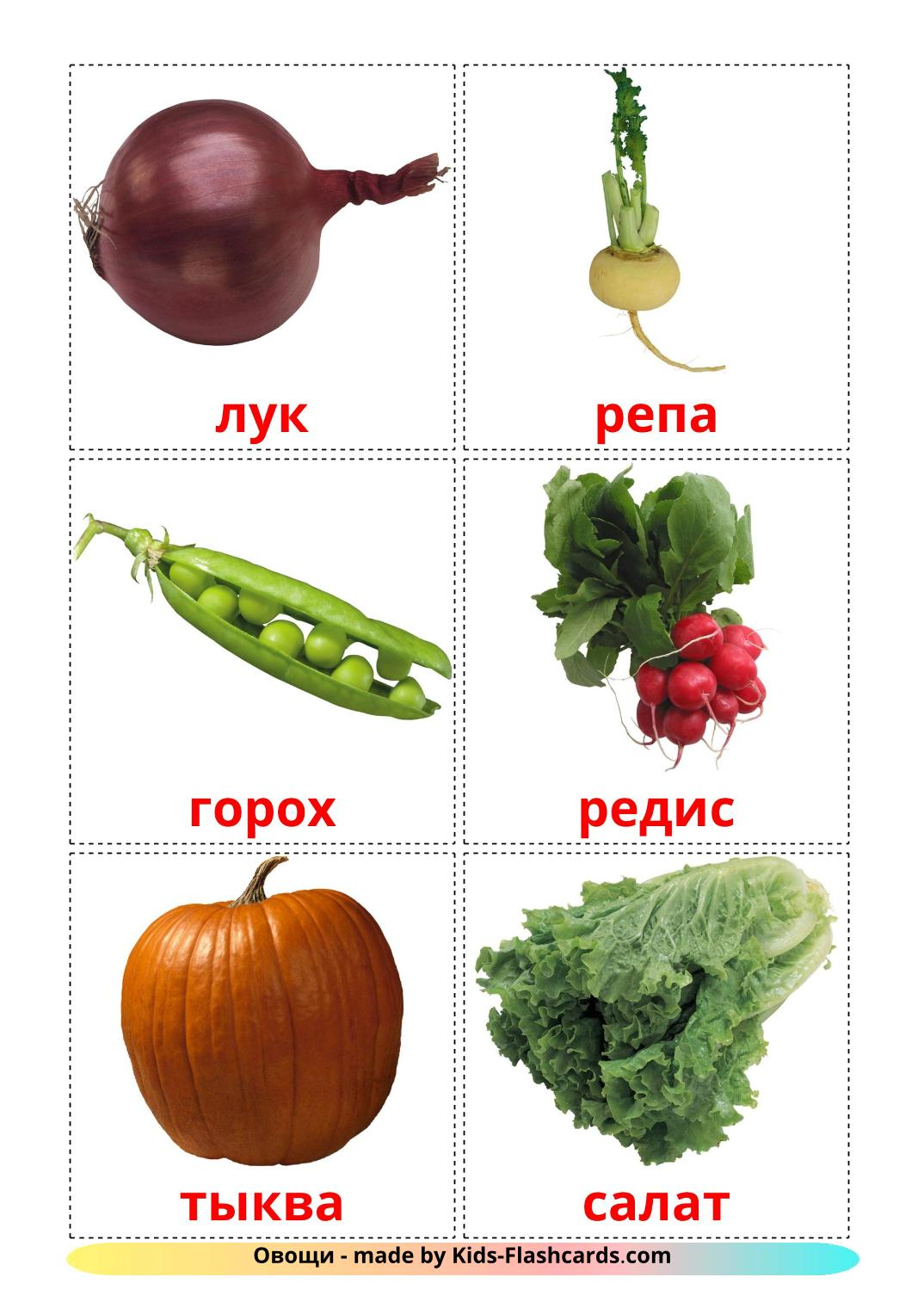 Vegetables - 29 Free Printable russian Flashcards