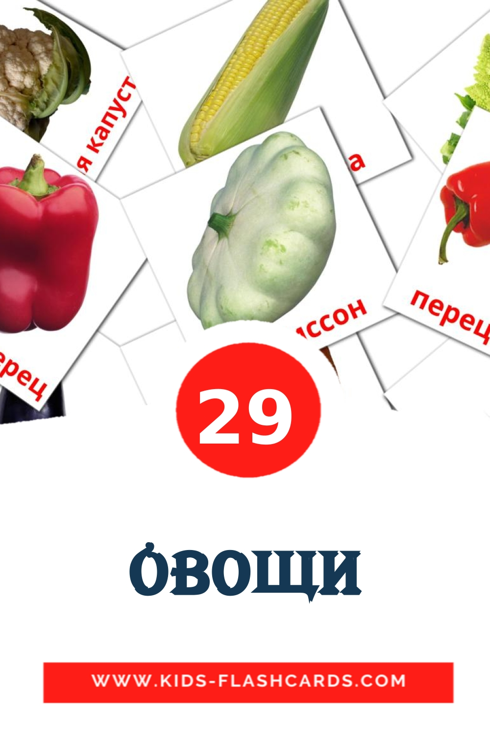 29 Овощи Picture Cards for Kindergarden in russian
