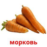 морковь picture flashcards