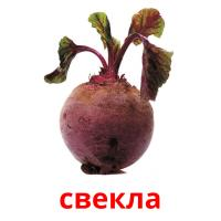 свекла picture flashcards