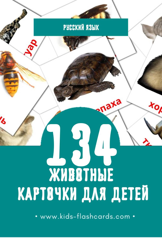 """""""Животные"""" - Визуальный Русском Словарь для Малышей (134 картинок)"""