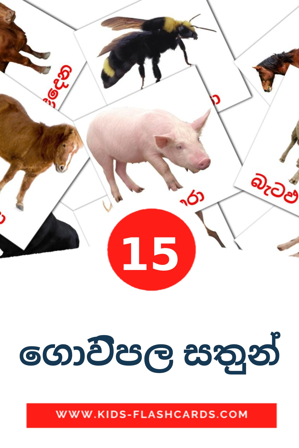 15 ගොවිපල සතුන් Picture Cards for Kindergarden in sinhala