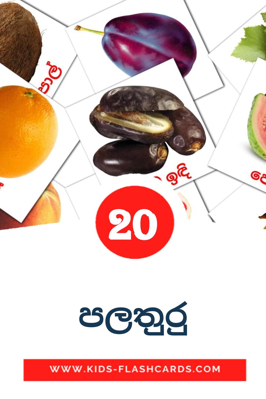 20 පලතුරු Picture Cards for Kindergarden in sinhala