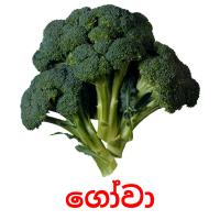 ගෝවා picture flashcards