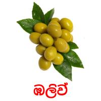 ඹලිව් picture flashcards