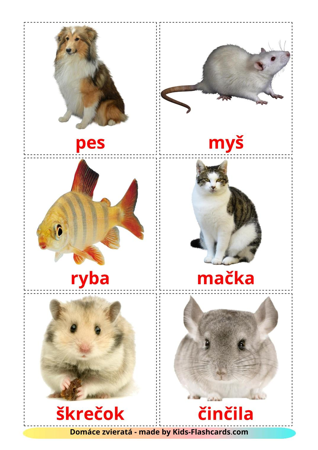 Domestic animals - 10 Free Printable slovak Flashcards
