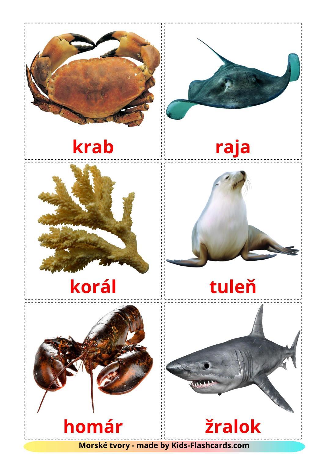 Sea animals - 29 Free Printable slovak Flashcards