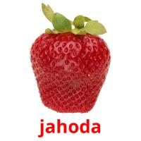 jahoda picture flashcards