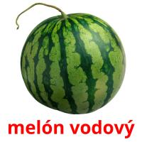 melón vodový picture flashcards