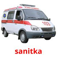 sanitka picture flashcards
