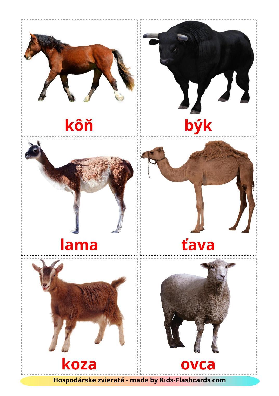 Farm animals - 15 Free Printable slovak Flashcards