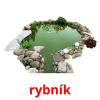 rybník picture flashcards
