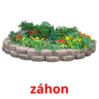 záhon picture flashcards