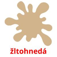 žltohnedá picture flashcards