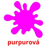 purpurová picture flashcards