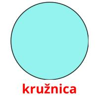 kružnica picture flashcards