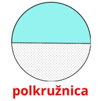polkružnica picture flashcards