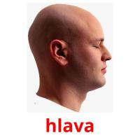 hlava picture flashcards