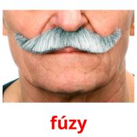 fúzy picture flashcards