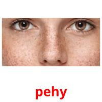 pehy picture flashcards