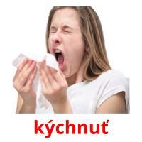 kýchnuť picture flashcards