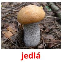 jedlá picture flashcards