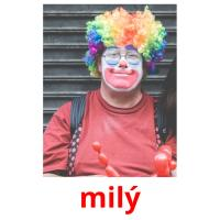 milý picture flashcards