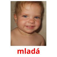 mladá picture flashcards