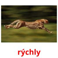 rýchly picture flashcards