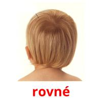 rovné picture flashcards