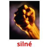 silné picture flashcards