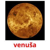 venuša picture flashcards