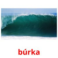 búrka picture flashcards