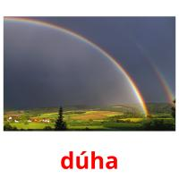 dúha picture flashcards