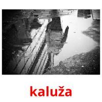 kaluža picture flashcards