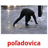 poľadovica picture flashcards