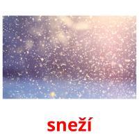 sneží picture flashcards