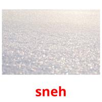 sneh picture flashcards