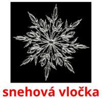 snehová vločka picture flashcards