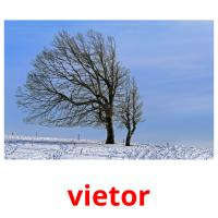 vietor picture flashcards