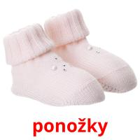 ponožky picture flashcards