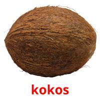kokos picture flashcards